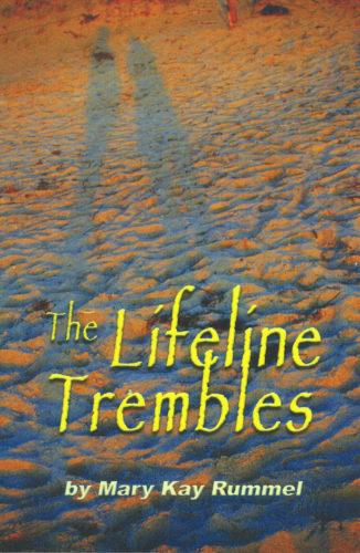 Rummel_Book Cover_2014